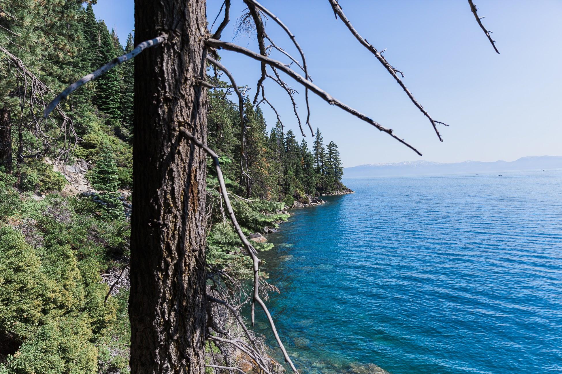 0114-Tahoe-TrailMavens-07012017-Final.jpg
