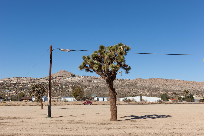 Joshua Tree, Yucca Valley