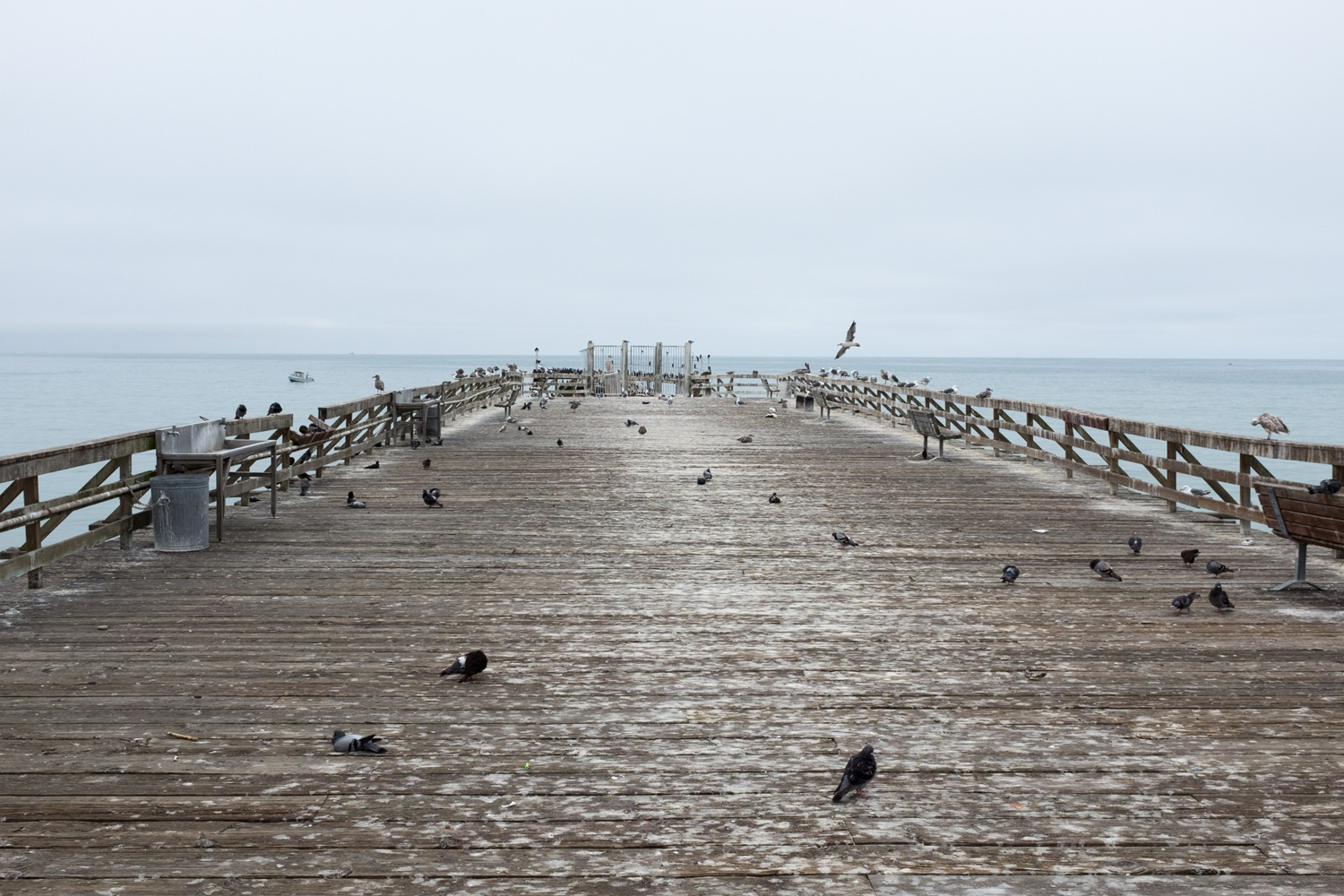 Pier, Sea Cliff Beach, Aptos.