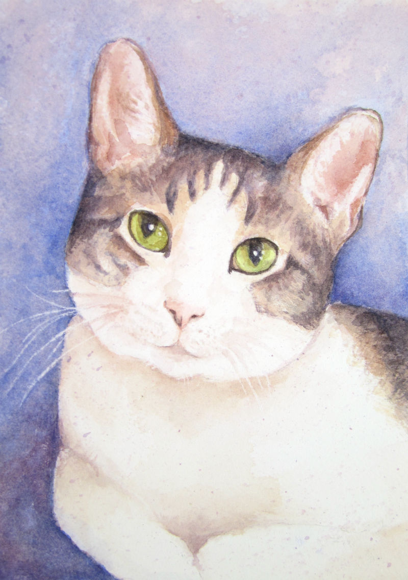 Custom watercolor cat portrait by Lydia Makepeace