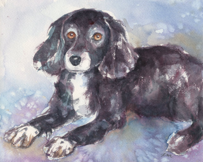 Custom Watercolor Pet Portrait by Lydia Makepeace