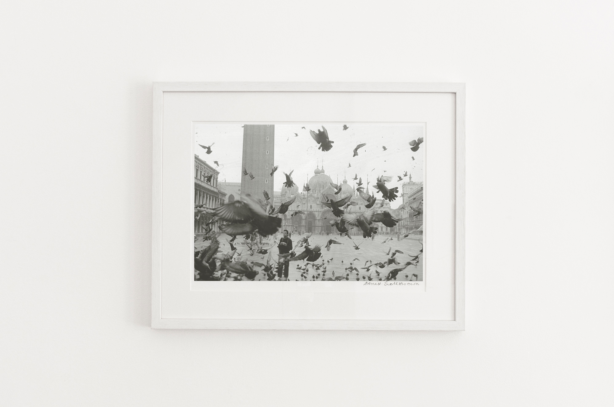 Pigeons of Piazza San Marco, Venice , 1956. Giclée pigment on Hahnemuhle archivalpaper, 45.5 x 30.3 cm (framed), Edition of 10