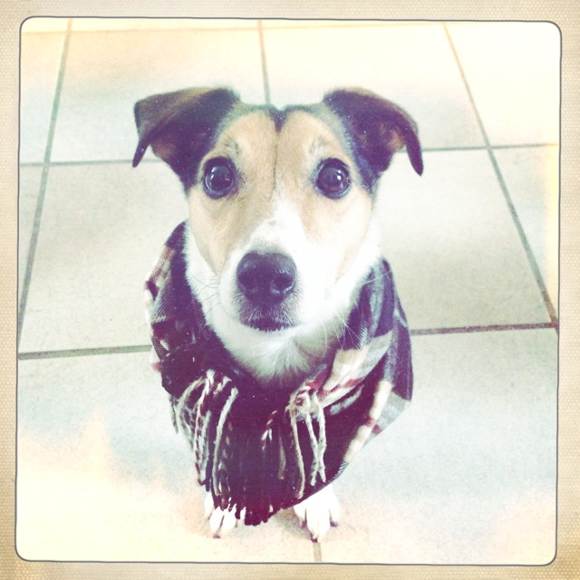 Floris wearing a scarf and looking awesome