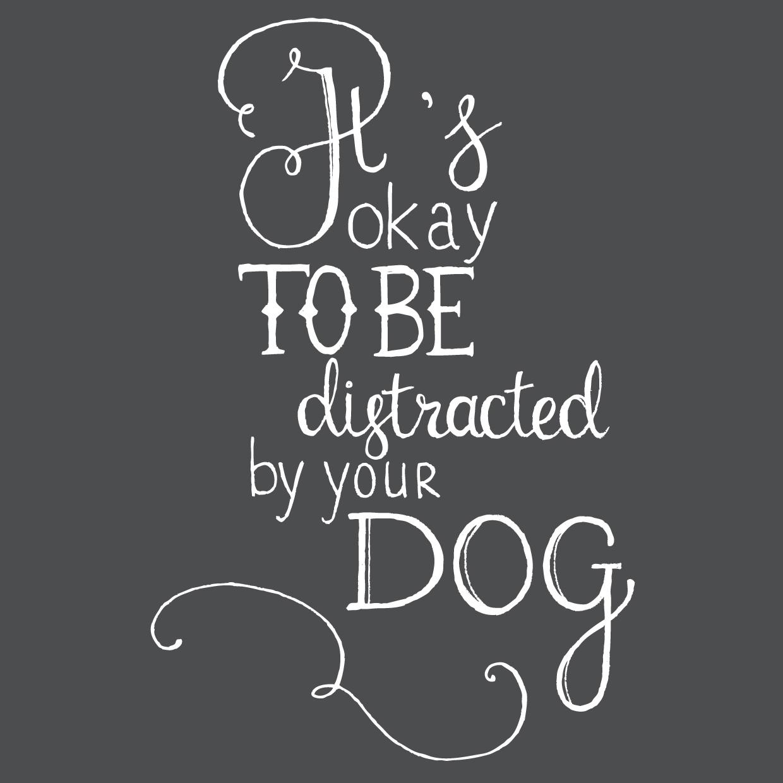 distracted_dog.jpg