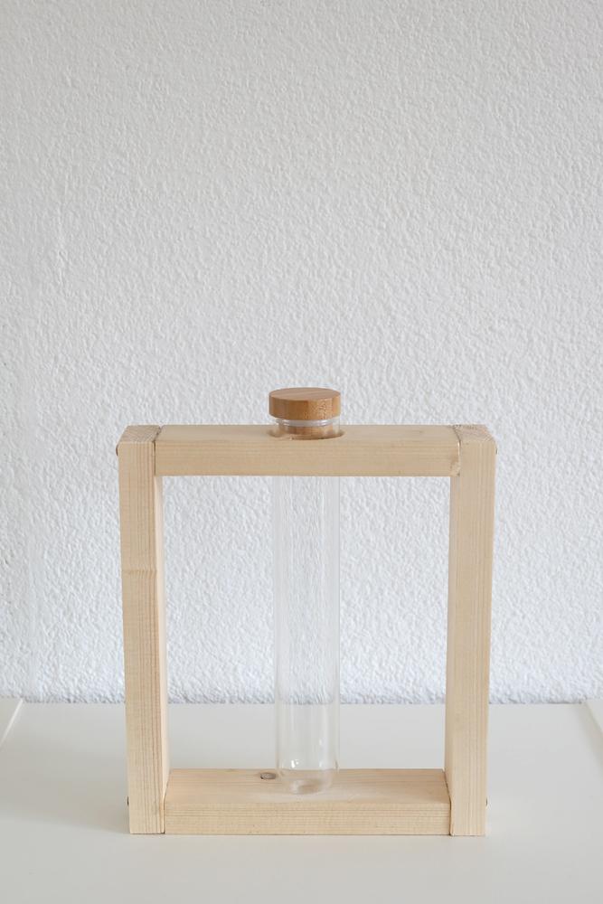 test-tube-vase.jpg