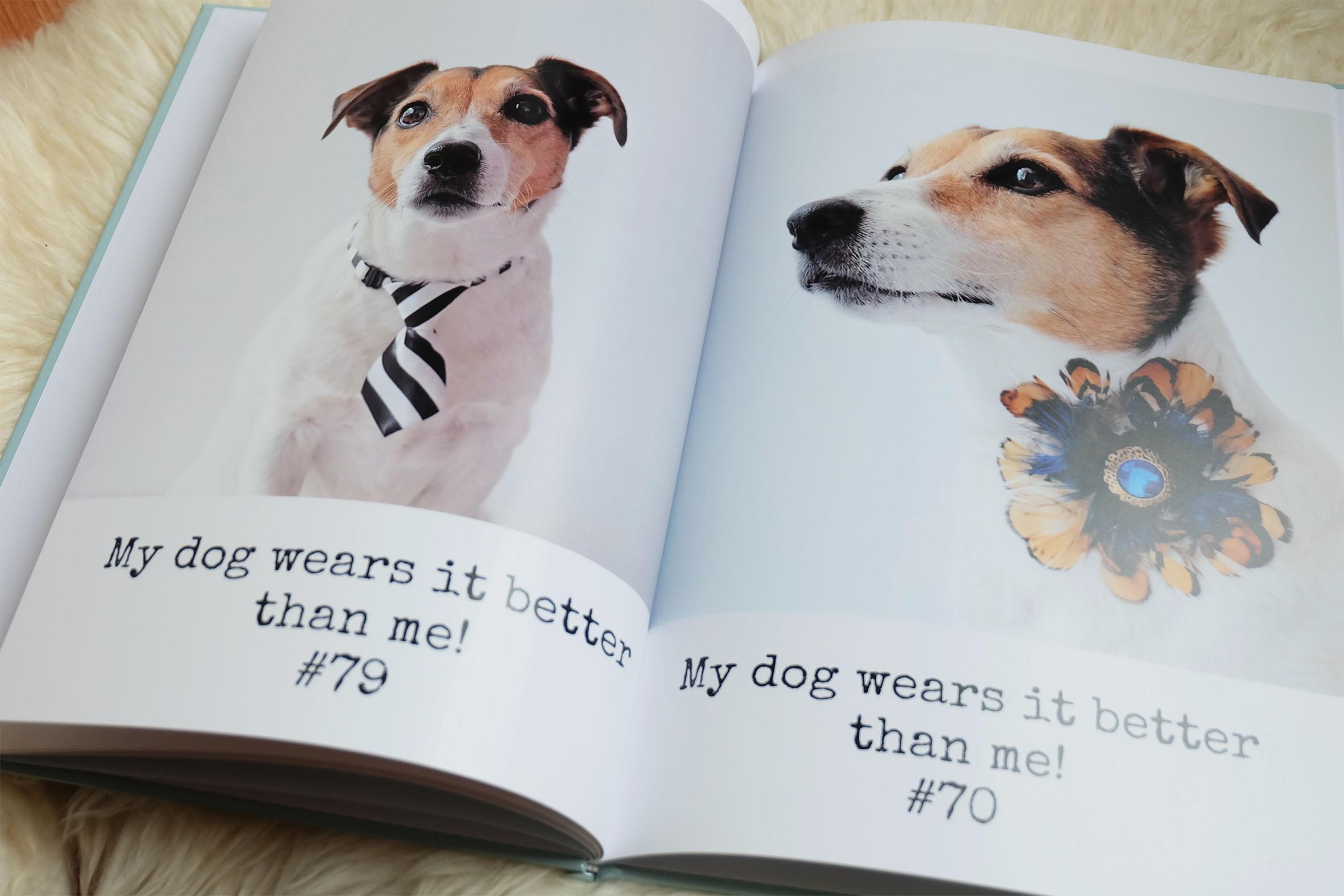 Fotoboek-ontwerpen-makkelijk