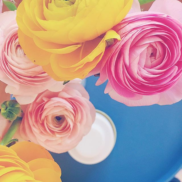 Kleur in je huis en een sneak peak van het geverfde tafeltje! . . . #flower #flowerstagram #flowerpower #interiordesign #interior #interiorstyling #styling #spring #lente #color #colorful #colour #popofcolor #helladuijs #bloemen #interieur #styling #kleur #kleurrijk #kleurrijkwonen #wooninspiratie #livingroom #livingroomdecor #bloem #diy #doityourself