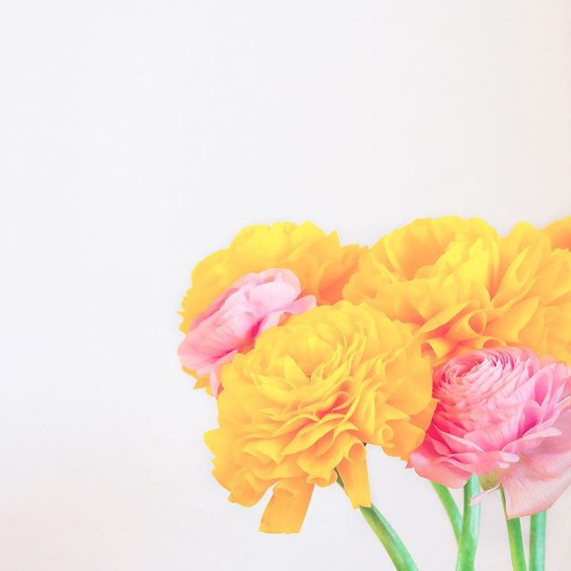 Happy Easter! . . . #easter #pasen #eastersunday #paaszondag #eerstepaasdag #flower #flowers #flowerstagram #spring #lente #colorful #bloemen #boeket #enjoy #flower_daily #yellow #pink #iloveflowers #happyeaster #relax #lovely #relaxingsunday