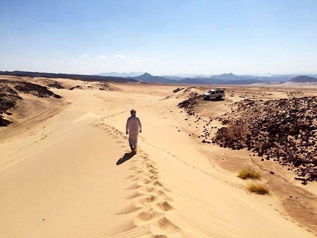 Not all those who wonder are lost. #desert #southsinai #sinai #bedouin #thebedouinway #trekking #hiking #adventuretravel #bedouinguide #dahab #sharmelsheikh #cairo #nuweiba #egypt #myegypt #egyptbyme #dahabegypt #jrrtolkien #quote #quotes