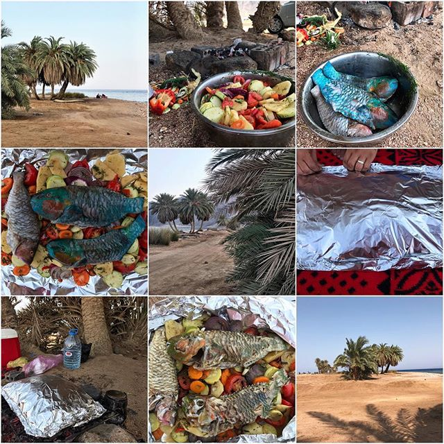 Enjoy with us the fish and vegetables in foil at the place of your choice around Dahab. Call us on 010922 02837 for more details and to book. 🐟🐠💦🌴 #bedouin #thebedouinway #dahab #southsinai #sinai #egypt #cairo #fish #fishrecipe #bakedfish #freshfish #redsea #fishing #picnic #alfresco #outdoorliving #beachlife #recipe #foil #steam #steamed #steamedfish #middleeast #mytravelgram #adventure #explore #travelphotography