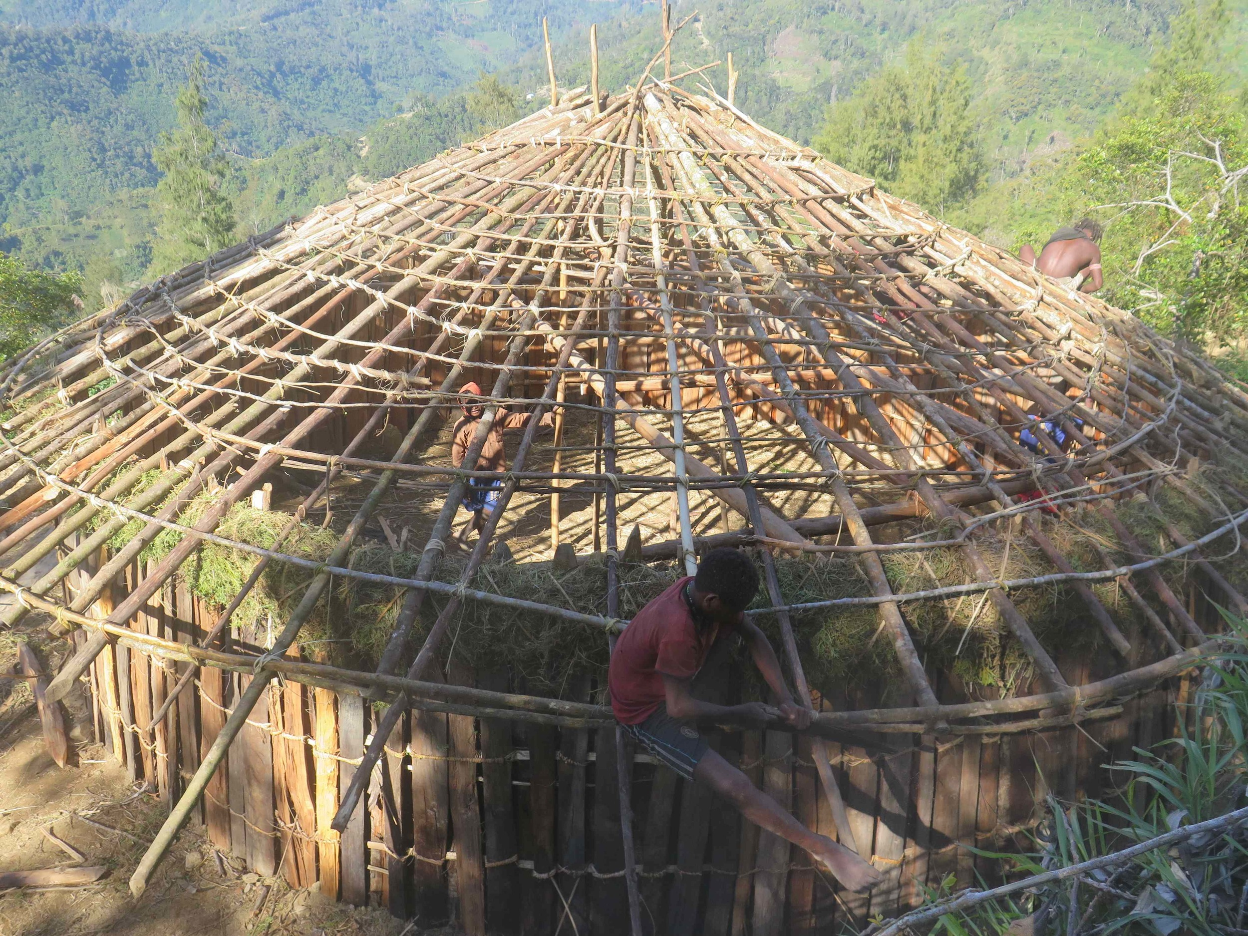 Suangama koyu / Suangama village