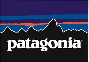 Patagonia - Perfectly practical with purposePatagonia originally made climbing tools, and their kids' clothes feature utility like Capilene® warmth, Polartec® Power Dry® wicking, Polygiene® odor control, brushed interiors, easy on/off necks, and non-chafing seams. And they literally wrote the book on responsible companies (The Responsible Company).