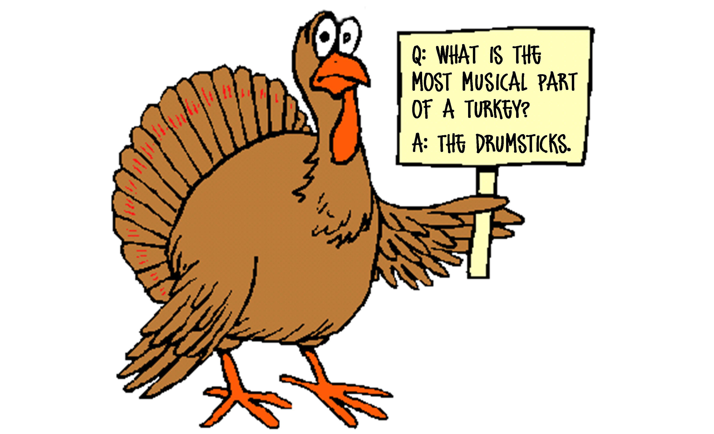 Turkey-Drumsticks1.jpg