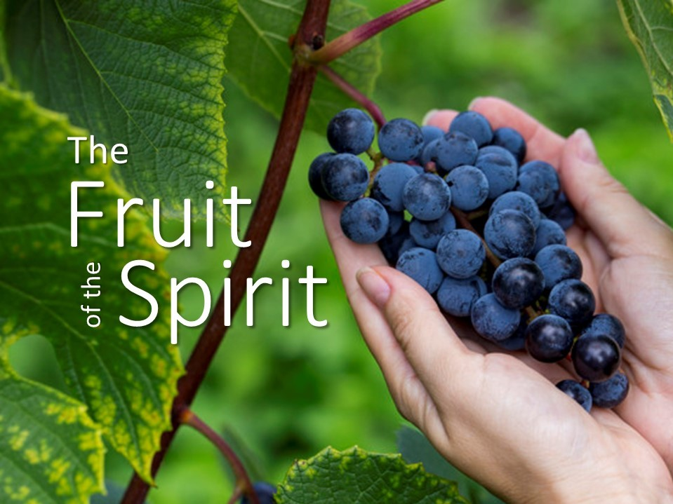 "Wednesday Nights Study  Join us as we study an 8 week series ""The Fruit of the Spirit"" based on Galatians 5:22-23; love, joy, peace, patience, kindness, goodness, faithfulness and self control.  Every Wednesday night, beginning at 7:00 pm from July 31."