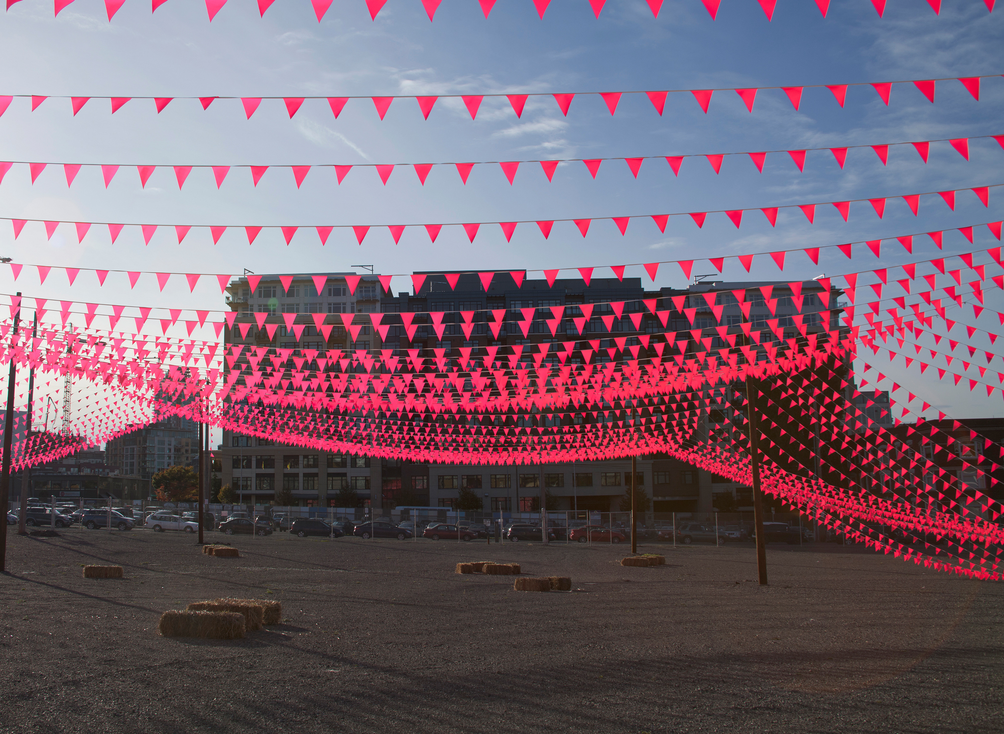 An authorless Canopy, with 20,000 linear feet of pink pennant flags