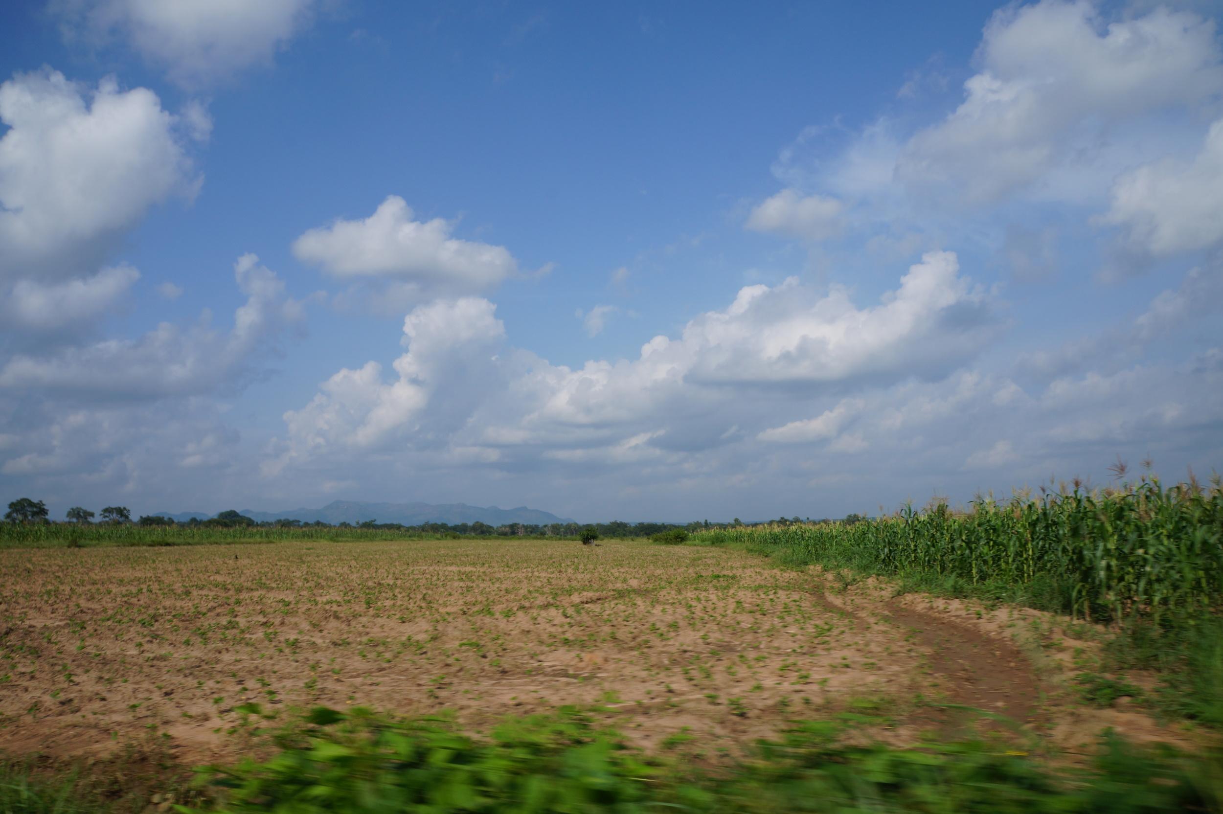 Blog 11 - Nasarawa.jpg