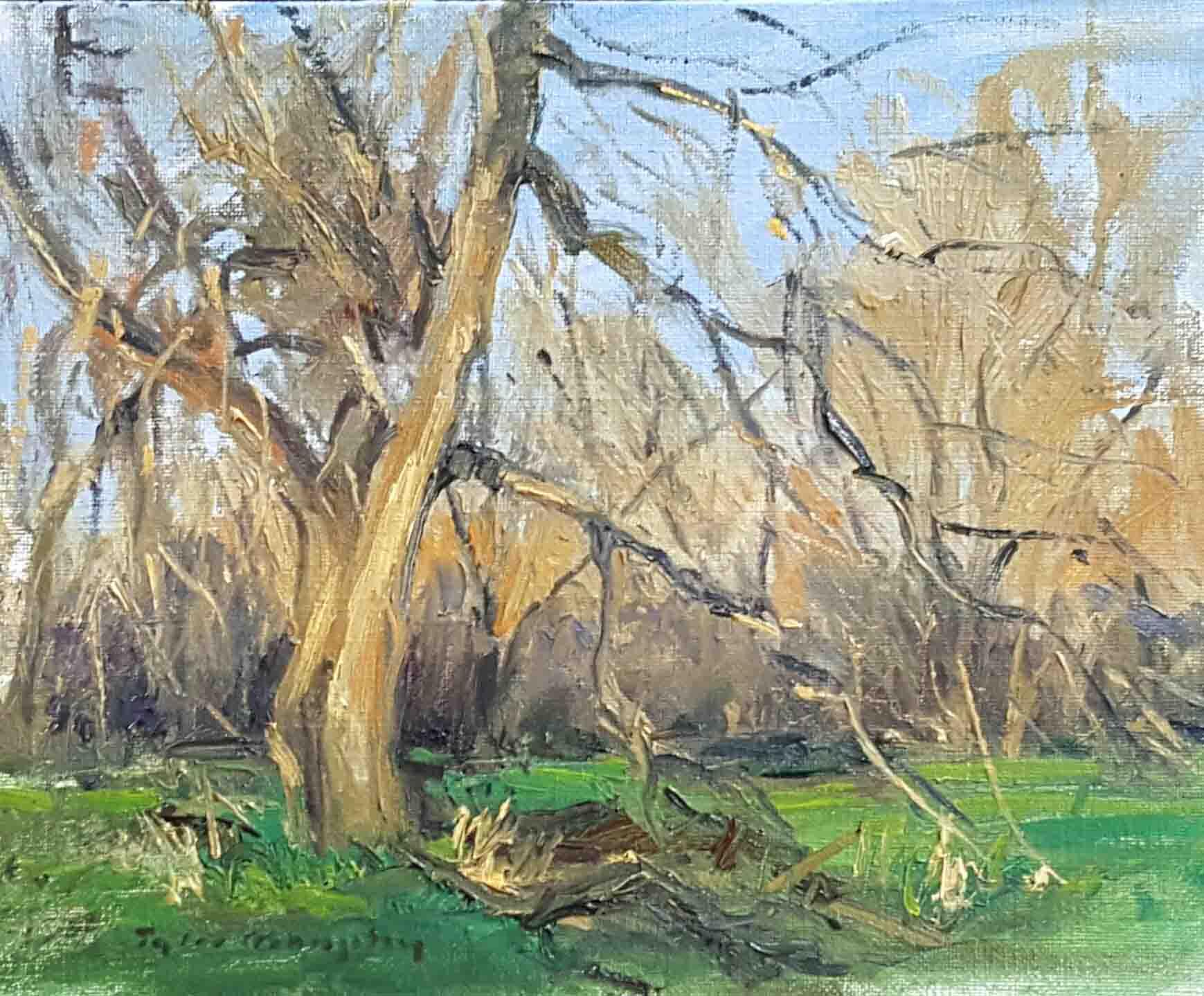 Early Spring Trees 8x10.jpg