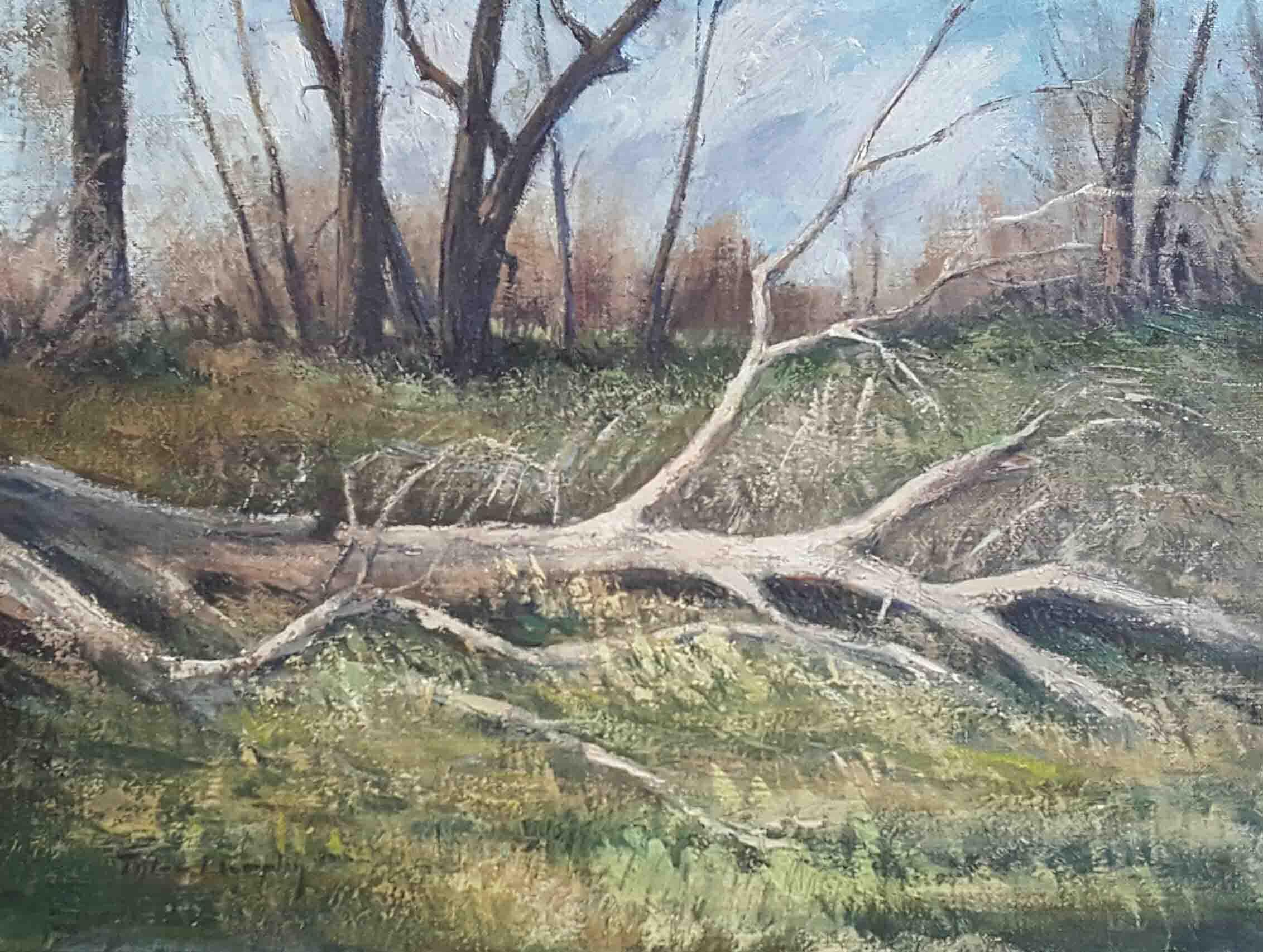 Fallen Tree 12x16.jpg