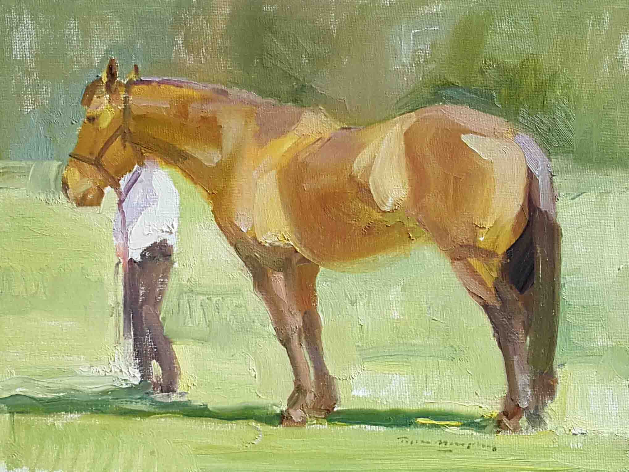 Horse and Owner 12x16.jpg