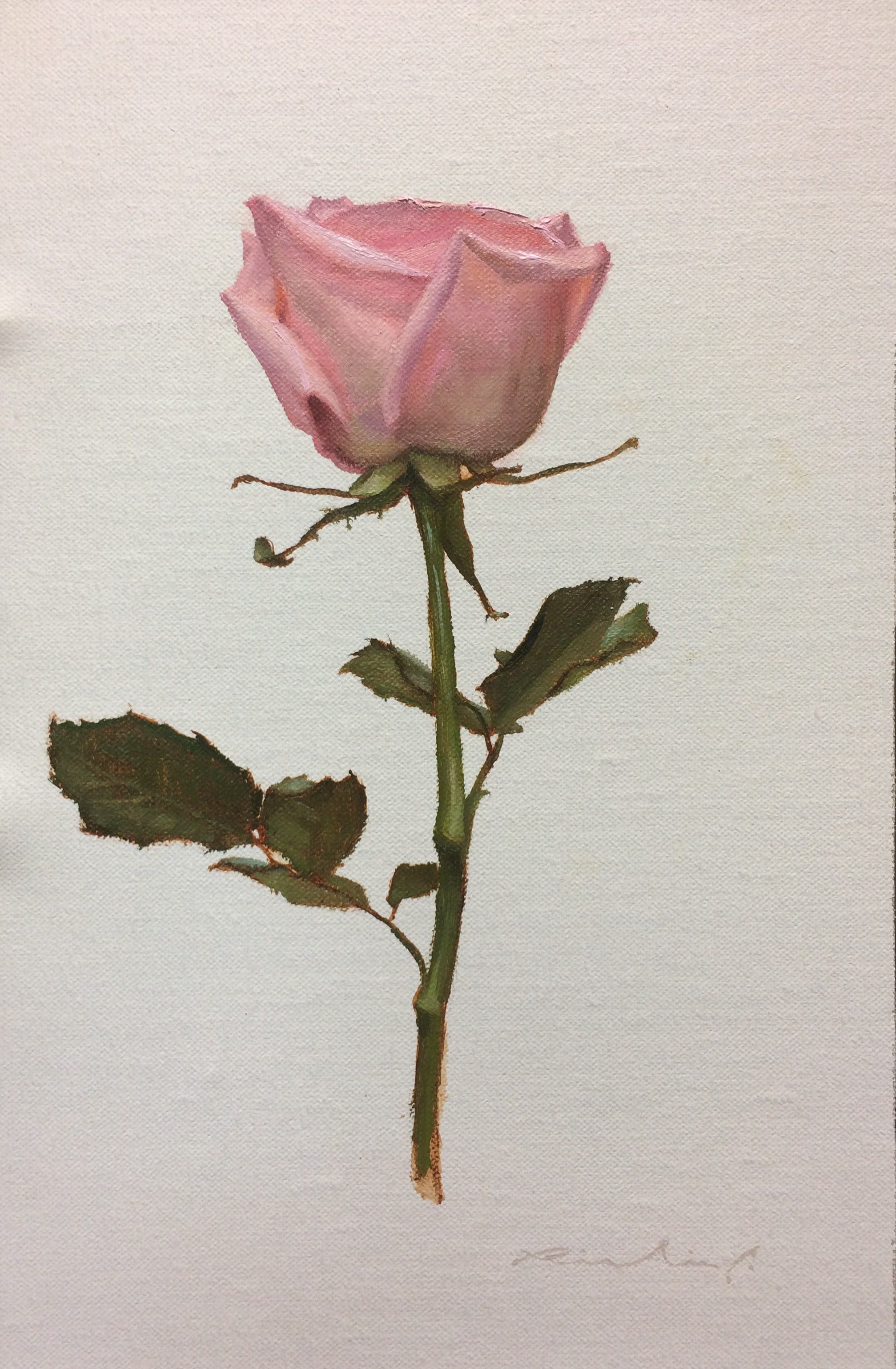 """Bed of Roses 1""  $650.00  8 x 12 inches 