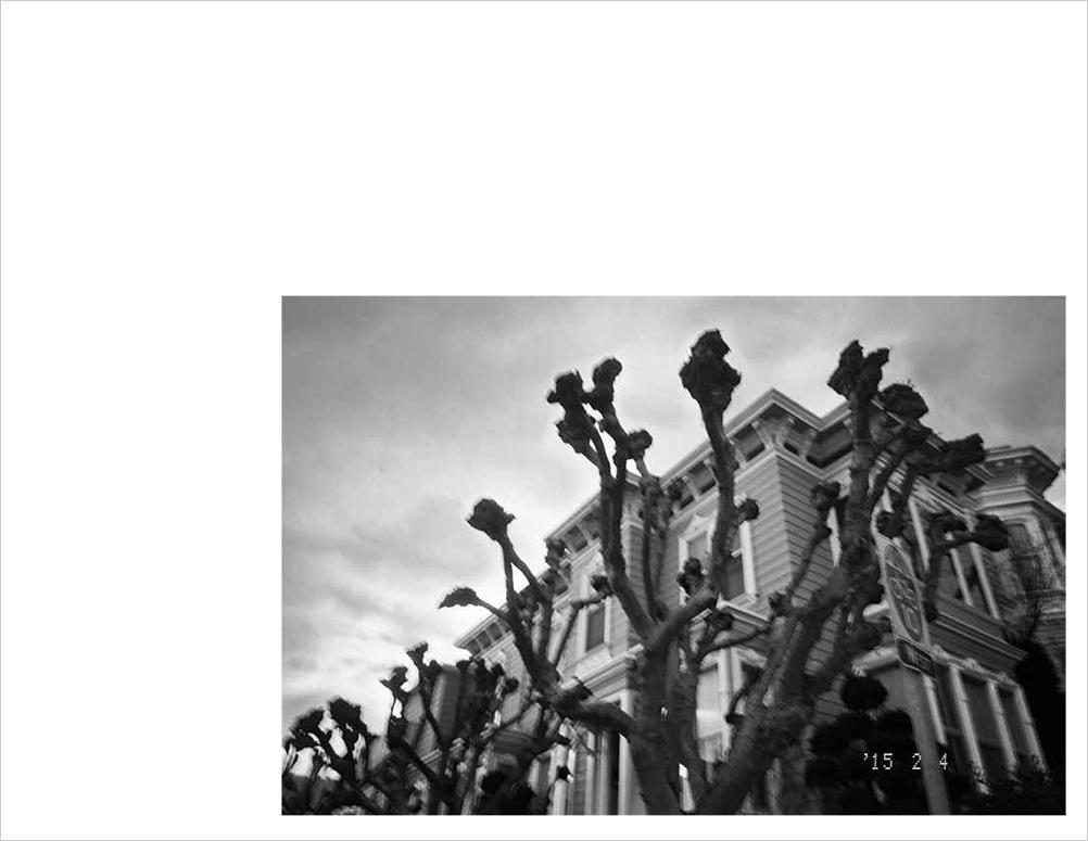 Horizon_Print_Final_LoRes-16.jpg