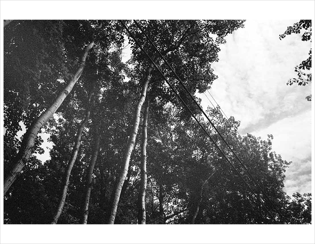 Horizon_Print_Final_LoRes-5.jpg