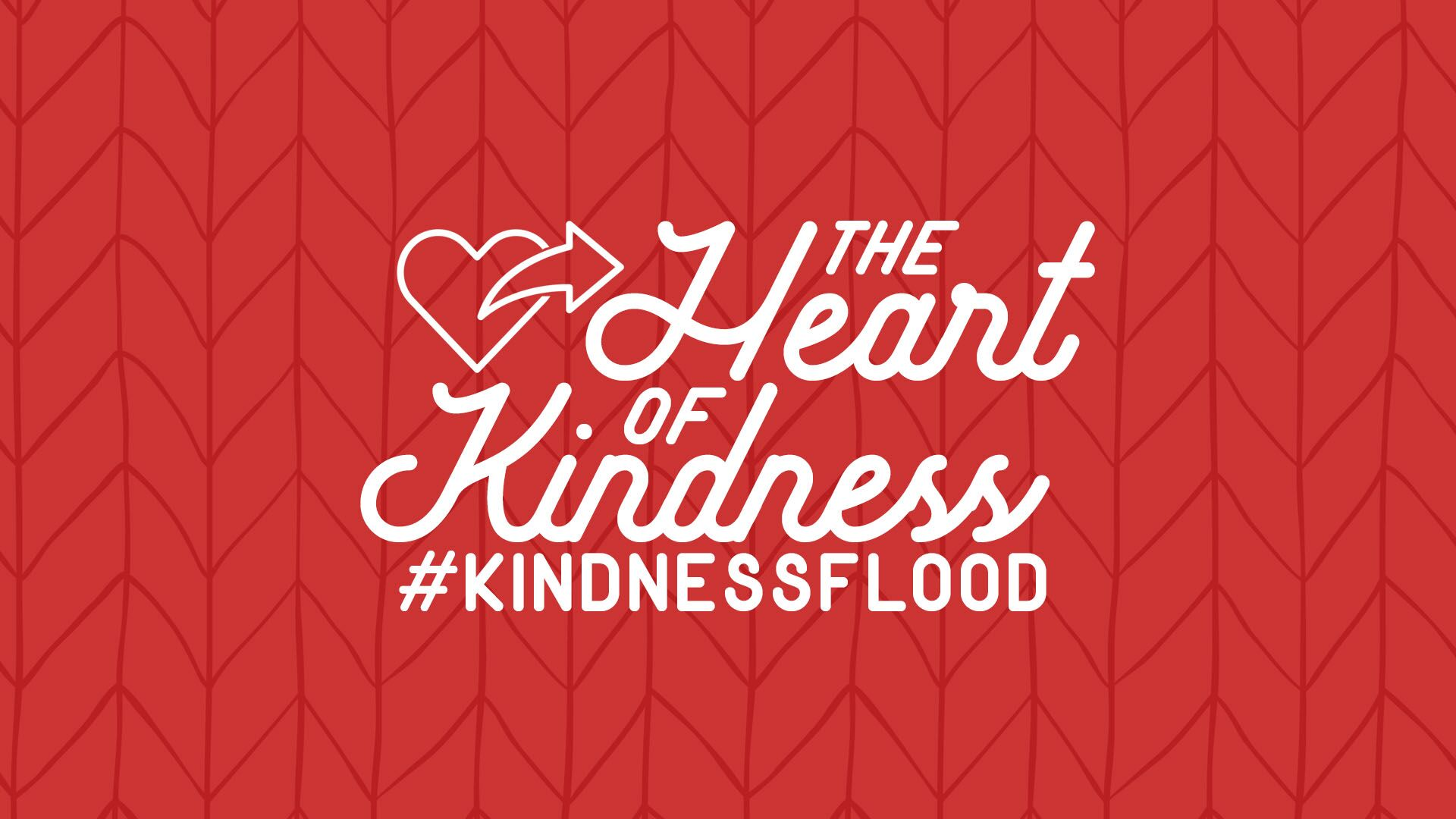 The Heart of Kindness Series - This is a four week series that will begin a flood of kindness in your youth group, church & community!
