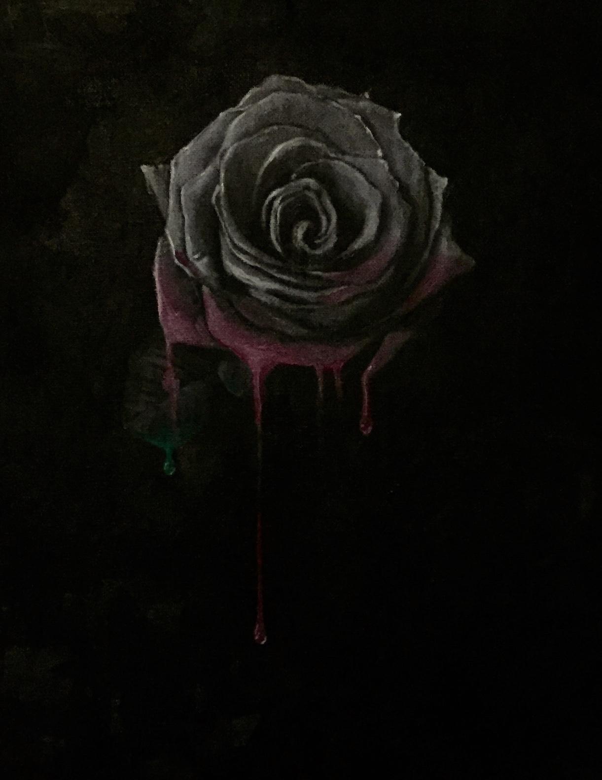 Study of a Black Rose