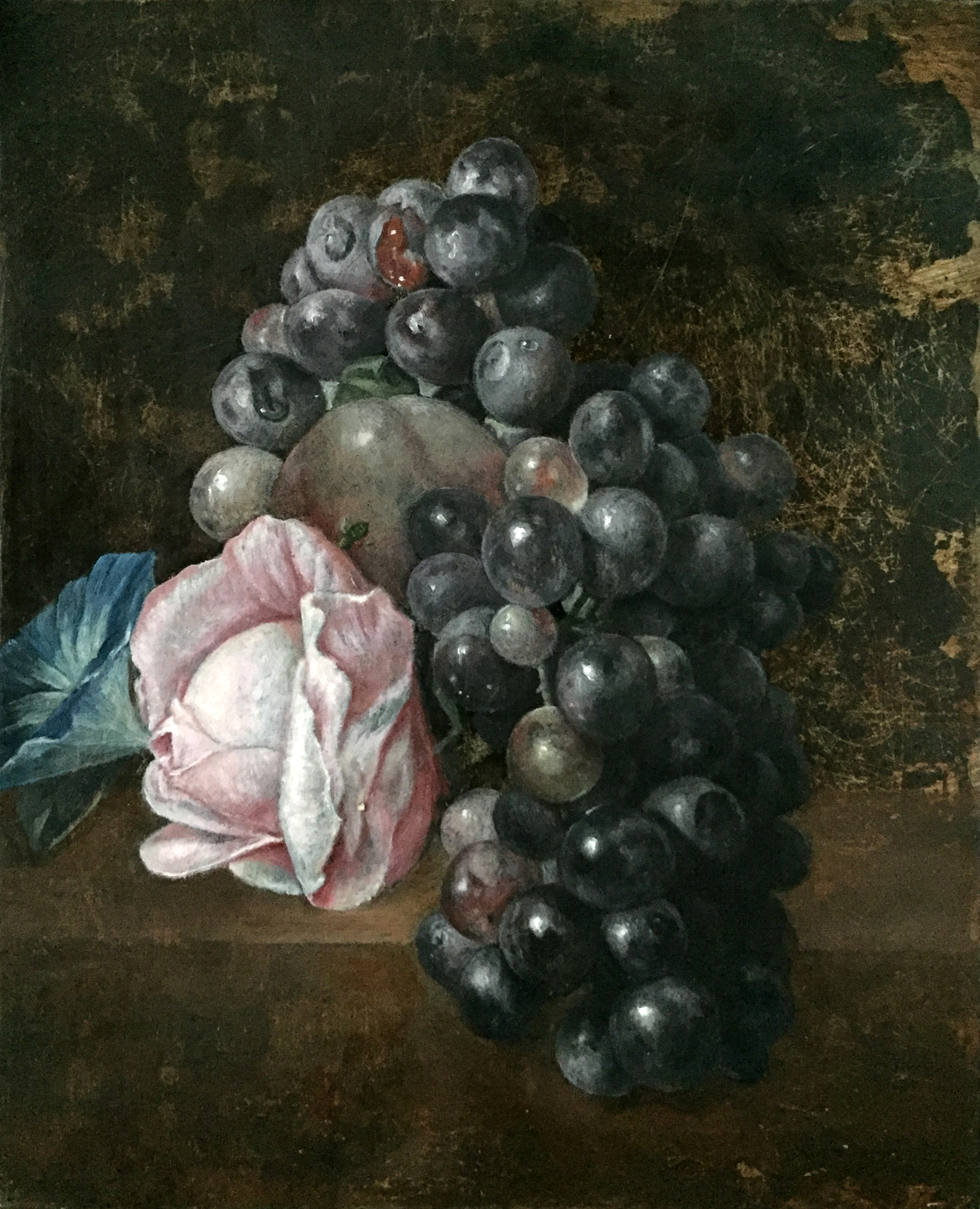 Grapes and Rose