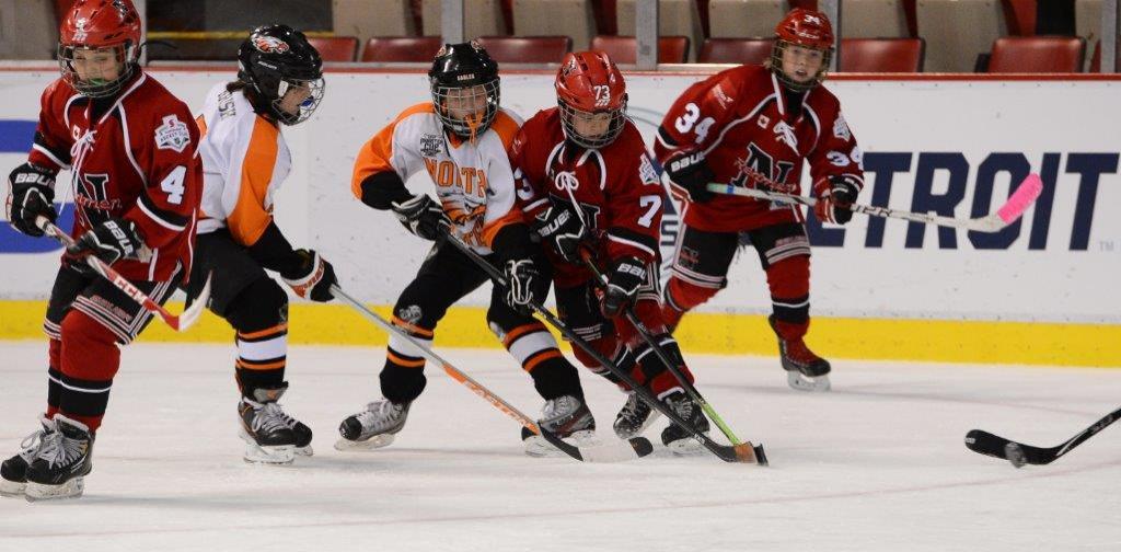 chubbs-stink-away-hockey-team.jpg