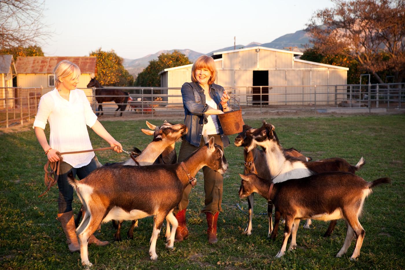 Country Living Farm Photo_1380.jpg