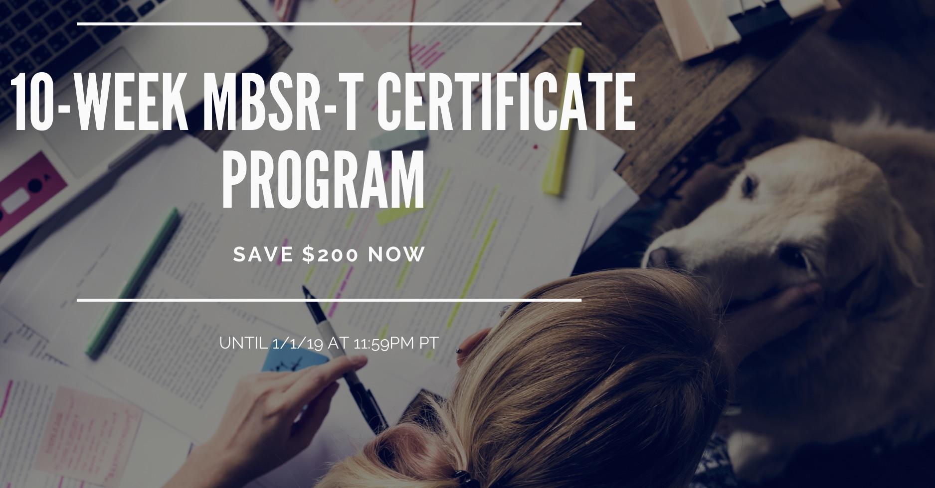 10-week mbsr-t certificate program.jpg