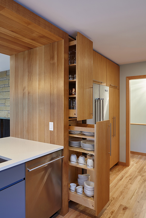 Pull-out Storage Cabinets
