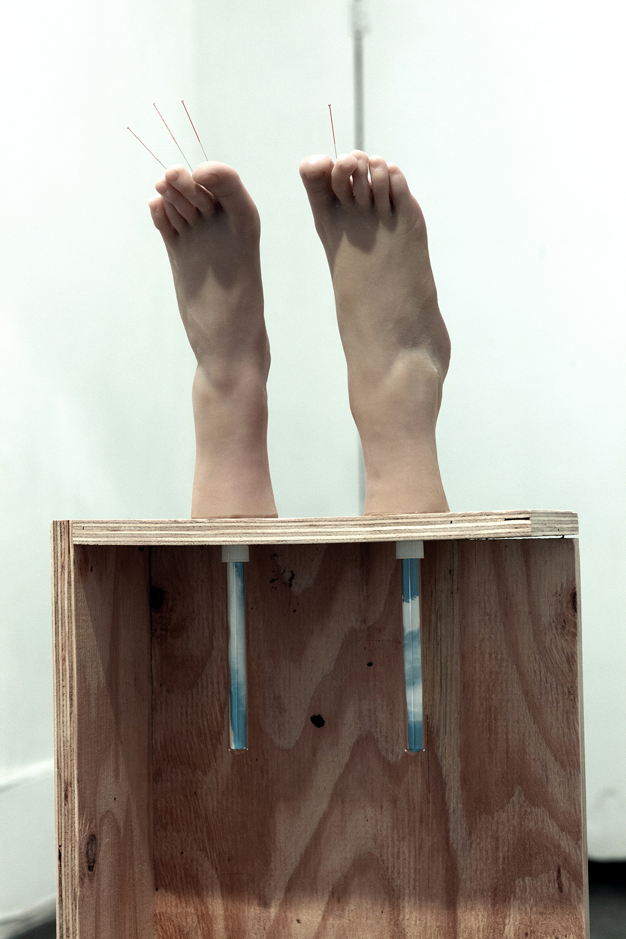 "Copy of Maryam Jafri. Anxiety (2017). 12.5""x 6.75"" x 40.5"". wood, silicone feet, acupuncture needles, test tubes, paper. Detail"