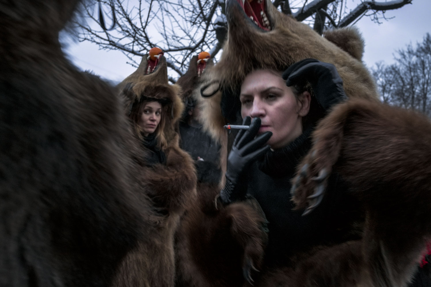 Troupes of bears from nearby towns and villages gather in Moineşti during the town's annual Bear Parade. Although in the minority, lady bears can be found in nearly every troupe. December 27, 2014. Moineşti town, Bacău county, Romania.
