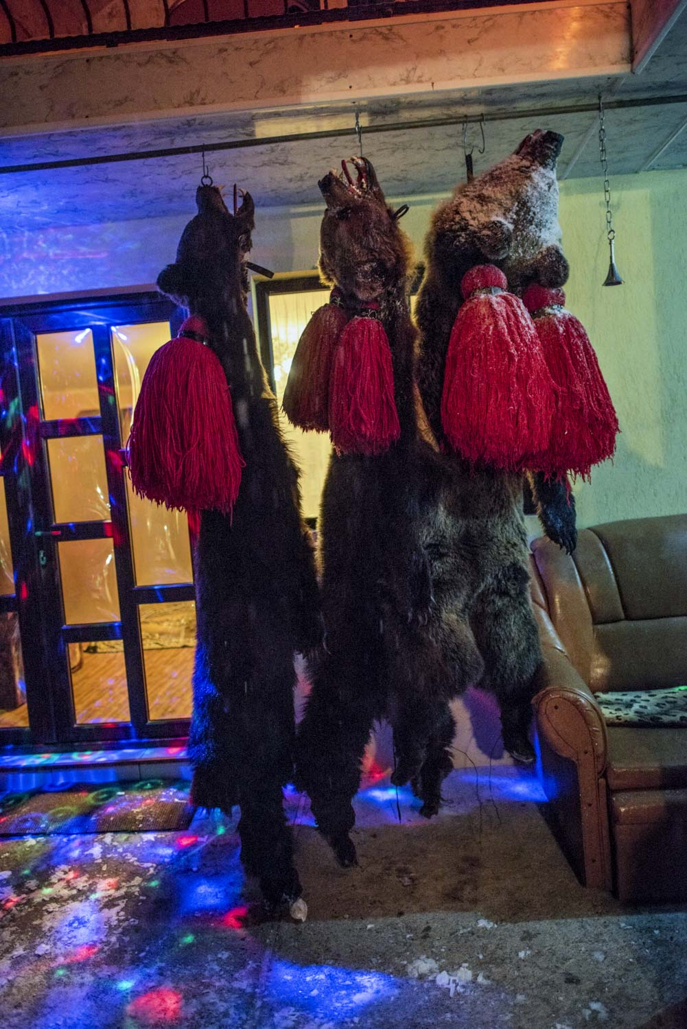At the end of each night, bear skins hang from hooks on the ceiling of Tolaocă's front porch. December 28, 2014. Laloaia village, Bacău county, Romania.