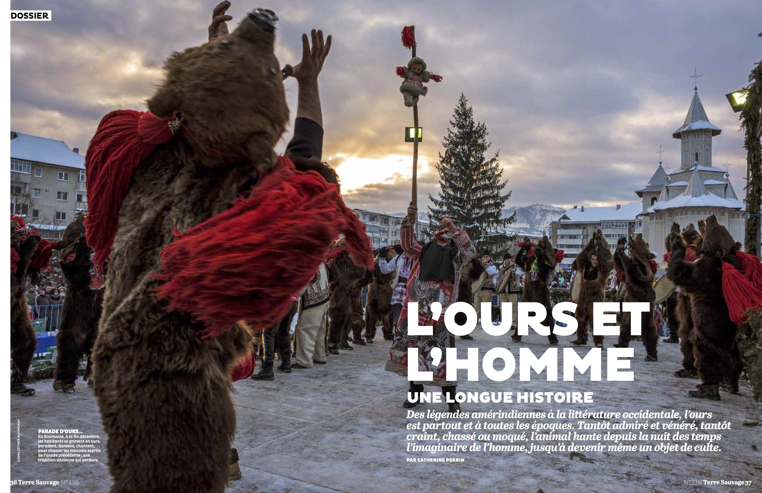 L'ours et l'homme  (The bear and the man)  | Terre Sauvage, No. 336, page 36-37, Jan 2017