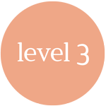 Level 3 Class Button