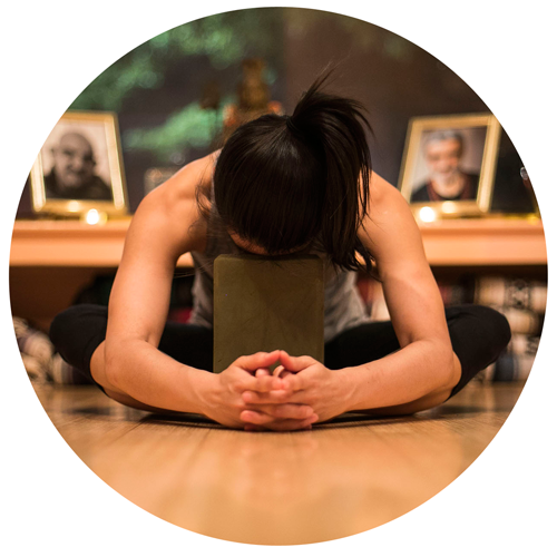 Jacquie Brown Restorative Yoga