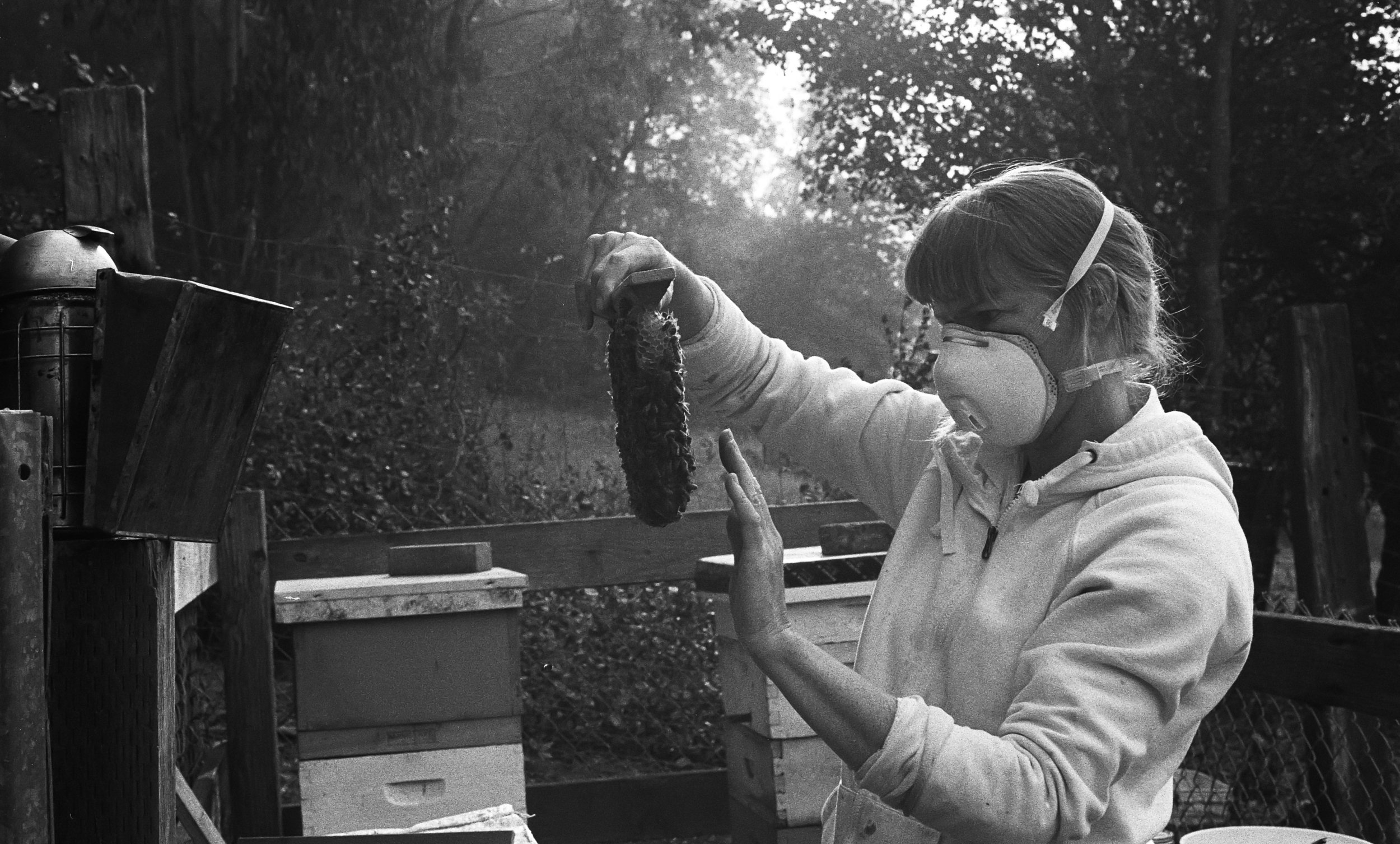 Getting creative- Normally Jennifer blows on bees to get them to move, but here she places her hand gently on top to get the bees to move