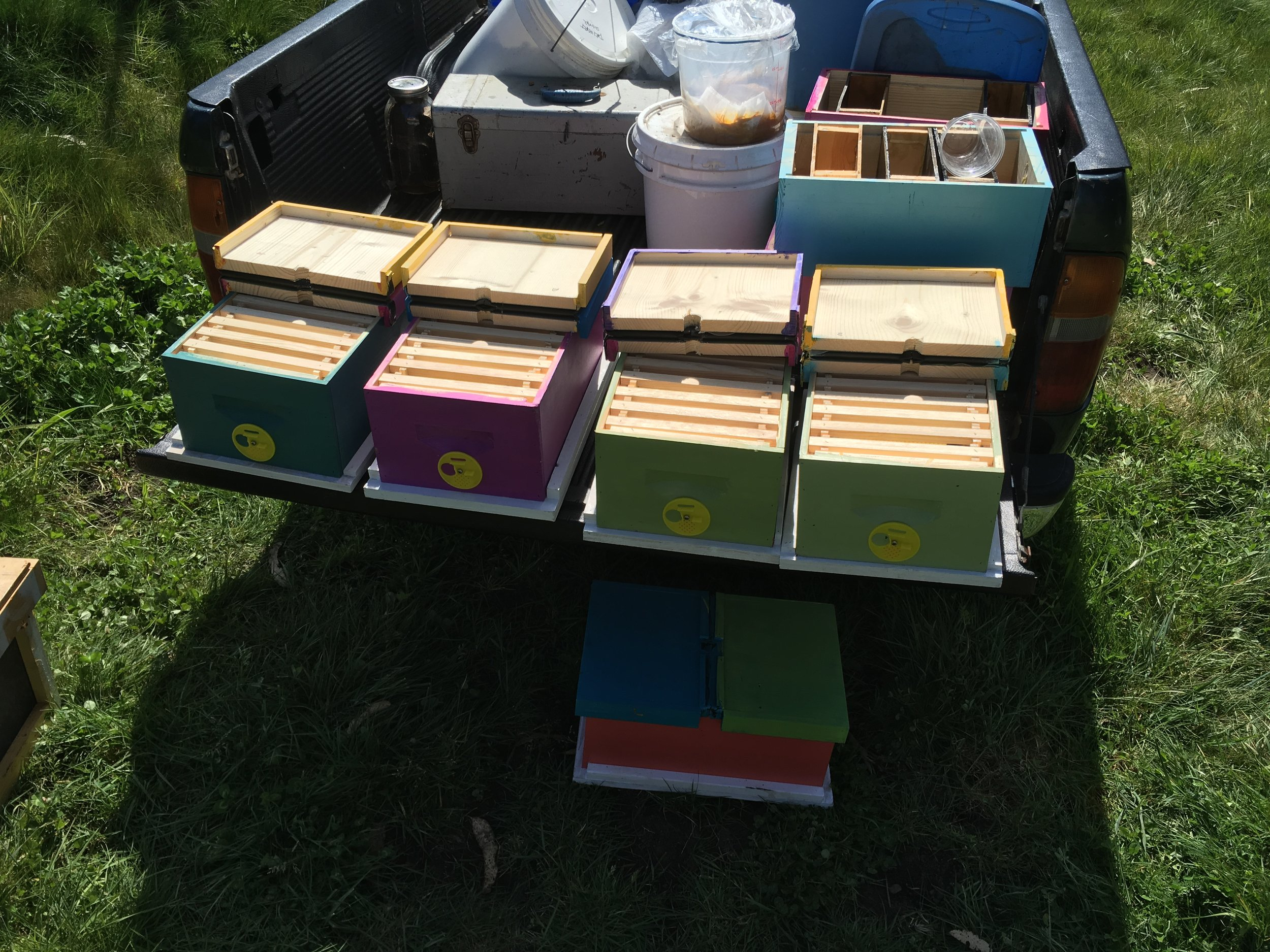 Hinged lids and center dividers so that each box gets two nucs with their own queen.