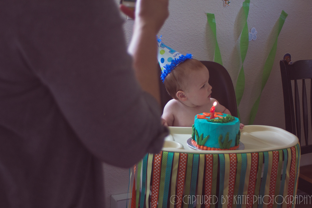 Birthday Cake By  Captured By Katie Photography, Bonney Lake Photographer