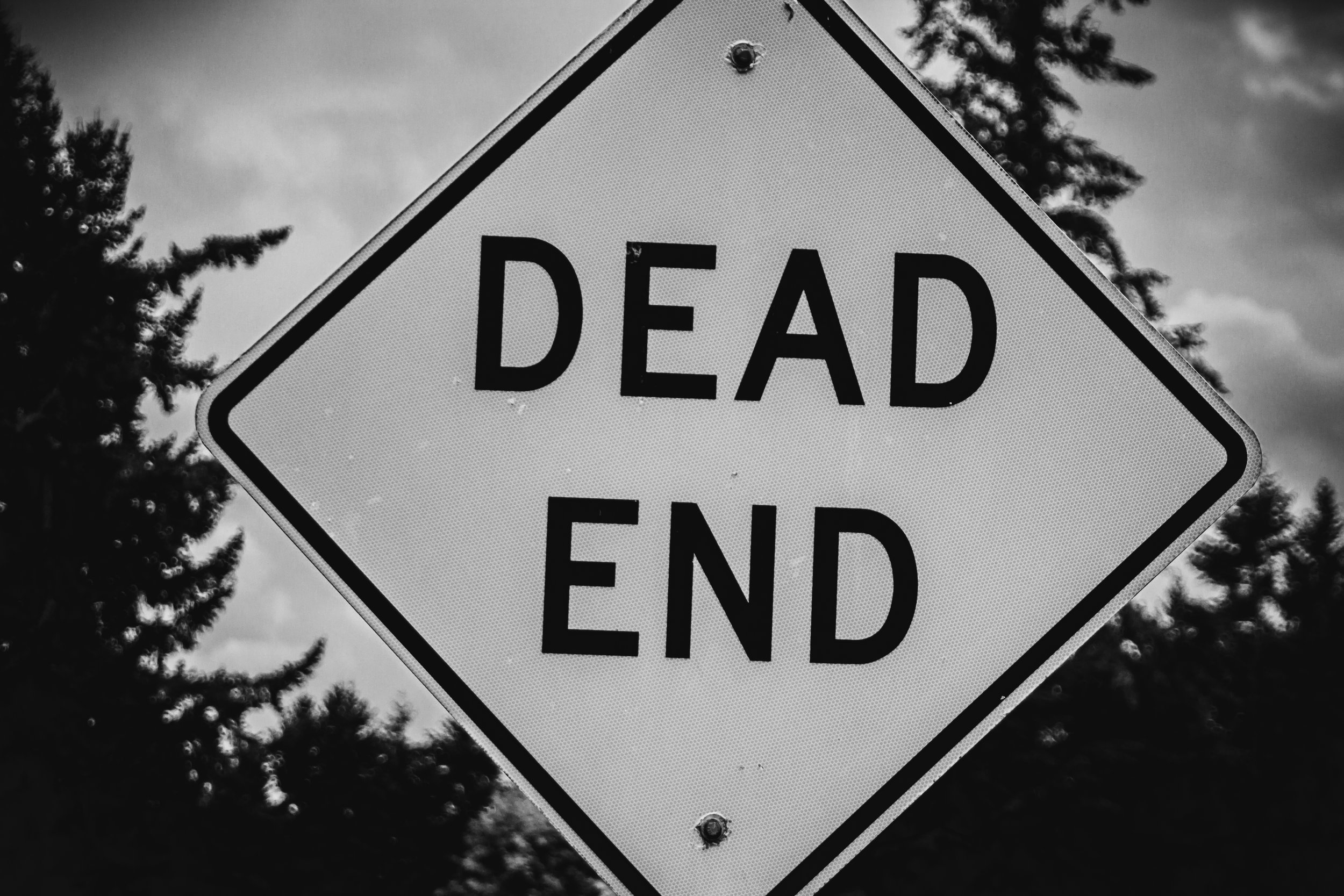 Dead End by Captured By Katie Photography, Tacoma Photographer
