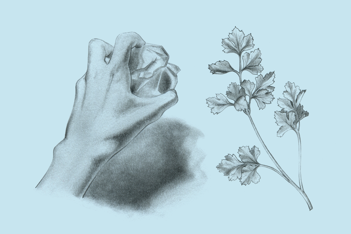 felipe_illustration_04.png