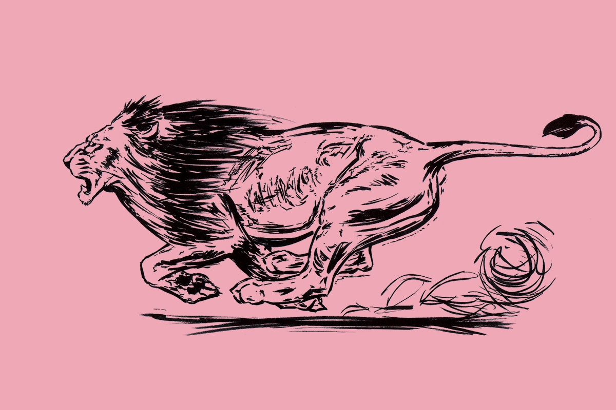felipe_illustration_03.png