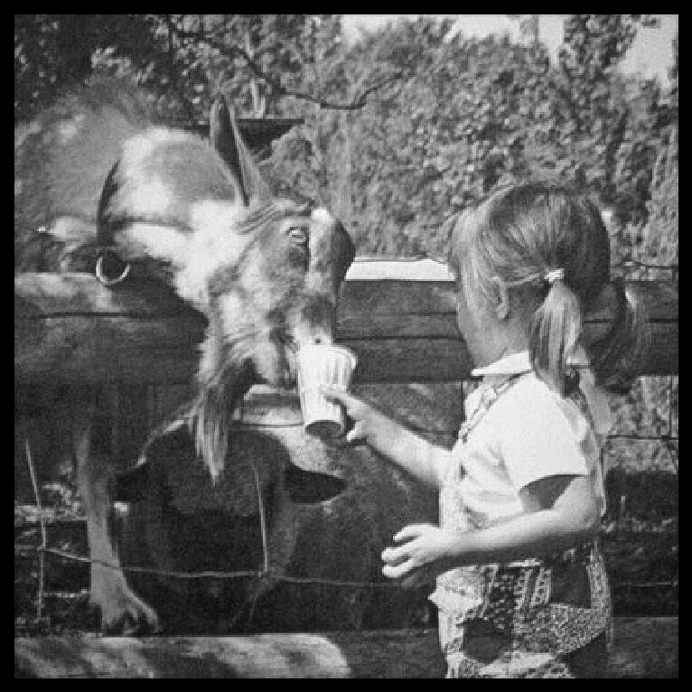 Childhhod photo goat 2.jpg