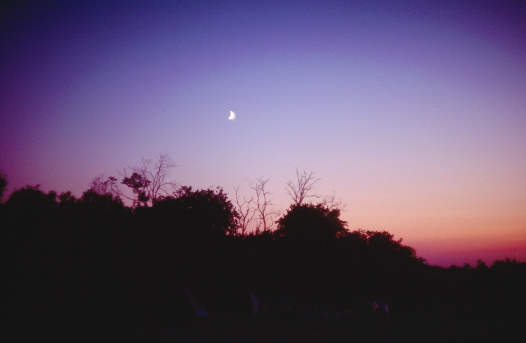 Mirjam Hümmer – Purple Moon