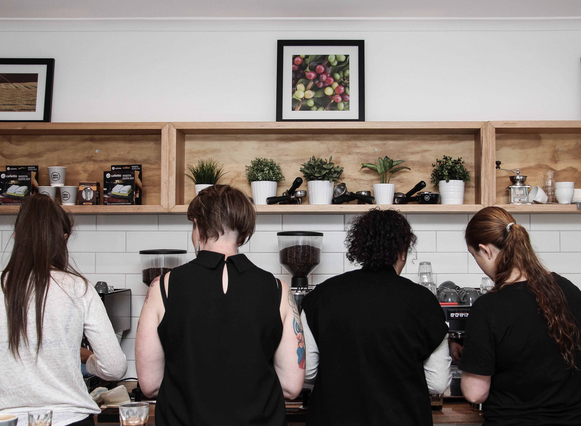 Advance Barista training melbourne at rubia coffee roasters moorabbin