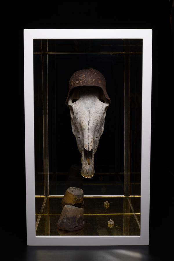 War Horse 1.jpg