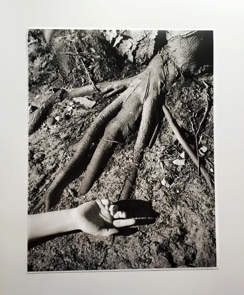 """""""Not so different""""RC Print, 35mm part of """"Man vs. Nature"""" collection"""